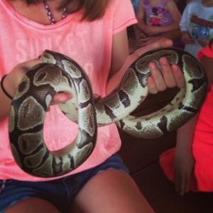 Python in Cocoa Beach 040213